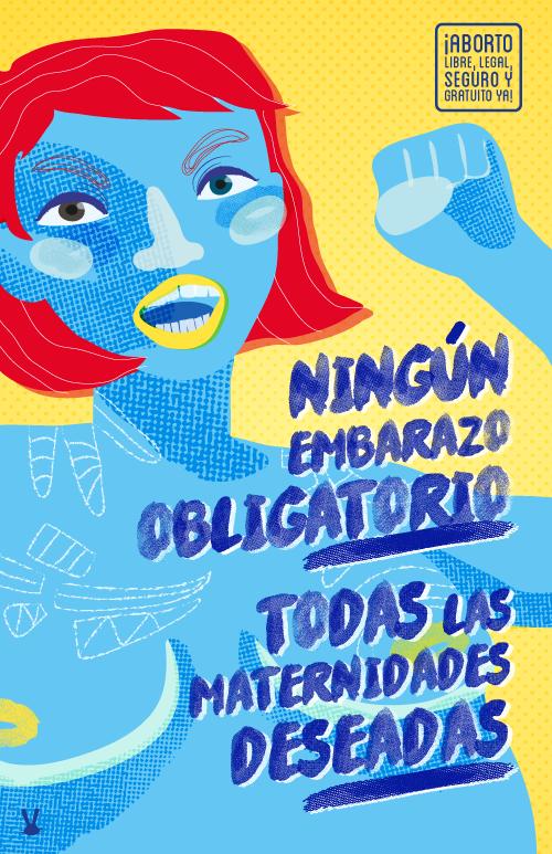 Causales para el aborto en México